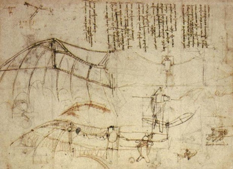Leonardo Design for a Flying Machine image